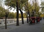 Parc Quianhai