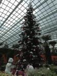 Noël au Dome des Fleurs