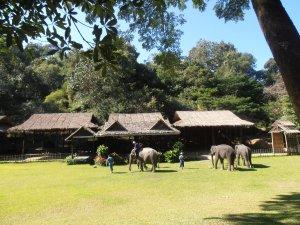 Camp Maesa