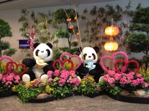 Nos Panda de Singapour